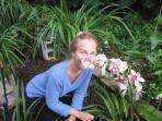 Danielle\'s orchids