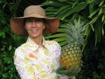 Danielle\'s pineapple garden