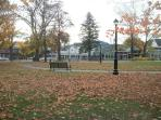 Village Green in the fall