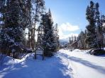 WIldwood Suites in Winter Ski-in Breckenridge Lodging