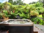 Outdoor garden jetted spa with UV light water sterilization, infraed sauna and shower