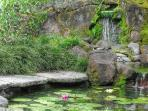 Relax and unwind by the pond and waterfall at the garden courtyard