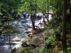 Beautiful waterfall and picnic area 5 min from the cabin!