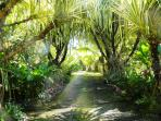Beautiful Gardens & Paths To Explore