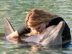 Key Largo-Swim with the Dolphins Encounters Nearby