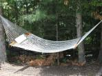 Hammock nestled among the trees