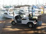 Take the golf cart to the marina to catch your whale watching tour, sport fishing charter or dinner cruise!