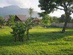3 BR Villa (2) Garden (10.000 m2)