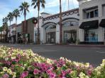 Shopping on El Paseo