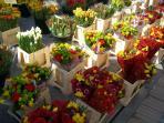 L'Isle ii-weekly market
