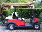 Deluxe golf cart