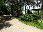 garden and gate