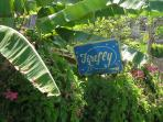 Noel Coward's Jamaica Home - Firefly