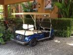 Golf cart available with rental