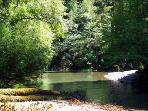 Glen Tara, On Austin Creek, Cazadero Vacation Home