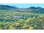 Tucson Retreat, a Sonoran Desert Sanctuary