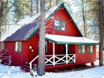 Luxury Cabin/Great Deck in the Pines with Hammocks