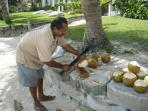 Fresh Coconut Juice in front of our condo