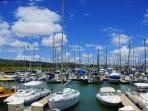 Ko Olina Marina (Lagoon 4) - take a dolphin watching cruise or a fishing charter
