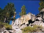 View the majestic rock formations on hikes throughout the tahoe basin