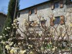 The farmhouse Casa Patrizia
