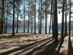 Located in beautiful Bass Lake