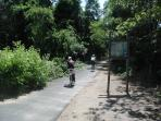 Bile Trail