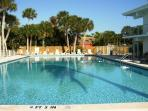 Olympic Swimming Pool at our Venice Villas