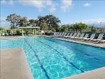 Large community pool offering aqua aerobics and lap swims...  Children's pool