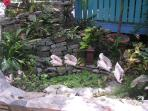 Charming pond greets you at the entrance to your studio..