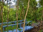 Bridge to meditation garden, Stonegarden Cottage