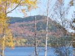 Beautiful fall foilage