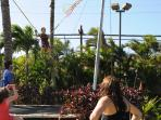 Trampoline and rock climbing at the Maalaea Sports Park