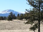 Views of Buffalo Peaks out the back of the property