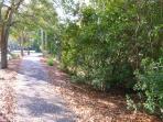 Bike Path Along Lagoon Road