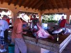 Prepping your catch at Puerto Los Cabos marina!