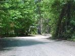 Private Wooded Gravel Road on Property