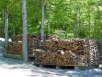 Complimentary Firewood (Uncovered or picture purposes) - Wolf Creek Cabin