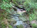 Green Branch Creek - Sounds heard  from Blueberry Hideaway