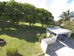 Spacious grounds with lots of mango trees!