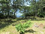 Pondview Summer