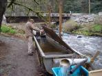 Fish hatchery at Mouat Creek. We care about our ecosystem.