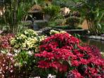 Luxury Studio in idyllic Valle Escondido Resort