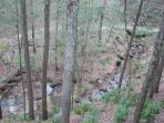 View of Green Branch Creek from Covered Porch