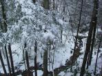 View of Creek from Creekside Overlook Cabin - January 2011 Snow