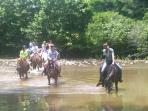 www.blueridgeparkwaycabinrentals.com Horseback Riding