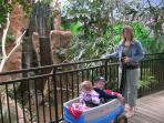 See many animals at the free Cape May County Park & and Zoo. Have lunch and play in the playground.