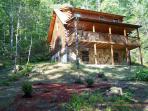Skip's Bearly Rustic Cabin