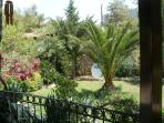 The garden from the terrace 2013