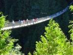 Capilano Suspension Bridge, North Vancouver -39 km away/35 min drive